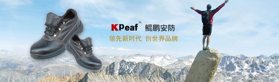 鲲鹏官方网站