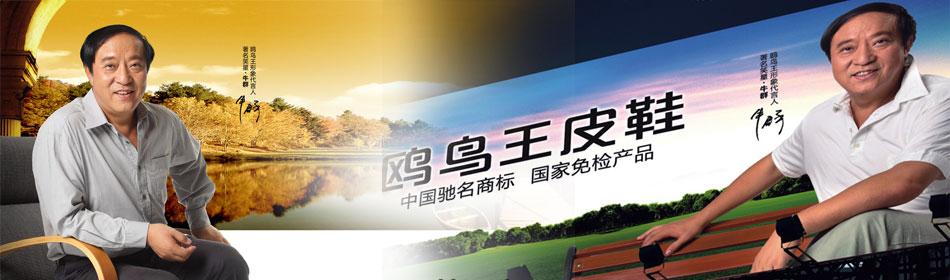 鸥鸟王官方网站