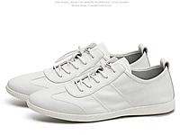卡丹路2020新款男鞋秋季潮流百搭板鞋